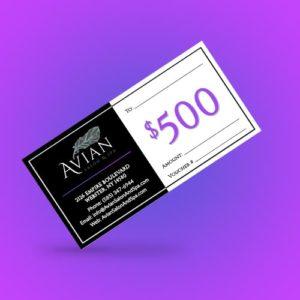 $500 Salon Gift Certificate
